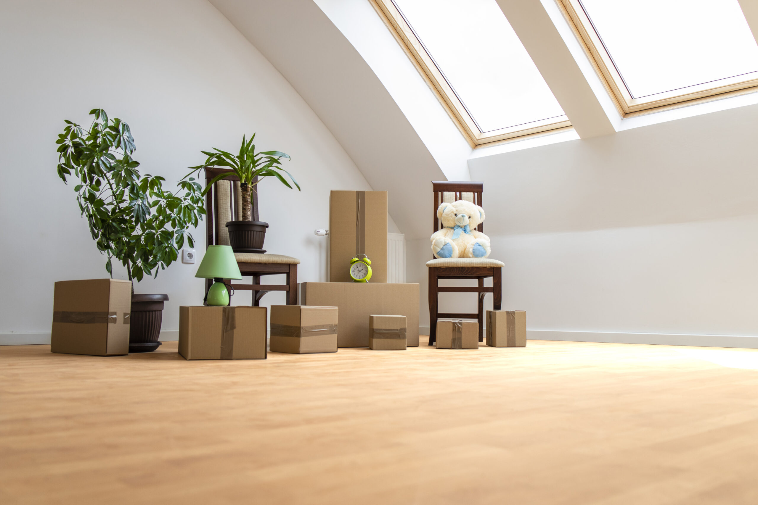New home, boxes, moving and real estate concept - moving into the new house and cardboard boxes flowers and toys in the living room.